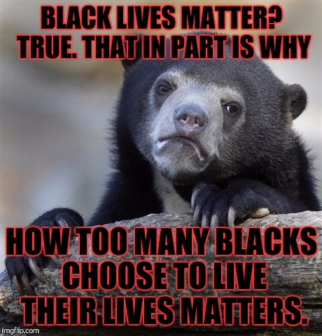 Confession Bear Meme | BLACK LIVES MATTER? TRUE. THAT IN PART IS WHY HOW TOO MANY BLACKS CHOOSE TO LIVE THEIR LIVES MATTERS. | image tagged in funny,memes,confession bear,politics,black lives matter,animals | made w/ Imgflip meme maker