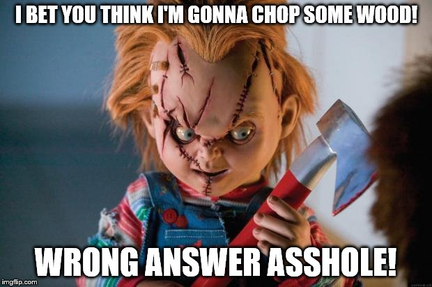 Chucky's not chopping wood | I BET YOU THINK I'M GONNA CHOP SOME WOOD! WRONG ANSWER ASSHOLE! | image tagged in chucky | made w/ Imgflip meme maker