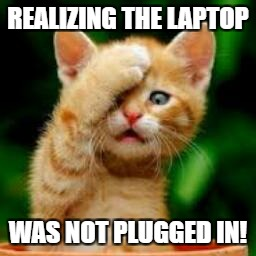 forgot cat | REALIZING THE LAPTOP WAS NOT PLUGGED IN! | image tagged in forgot cat | made w/ Imgflip meme maker
