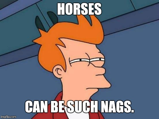 Futurama Fry Meme | HORSES CAN BE SUCH NAGS. | image tagged in memes,futurama fry | made w/ Imgflip meme maker