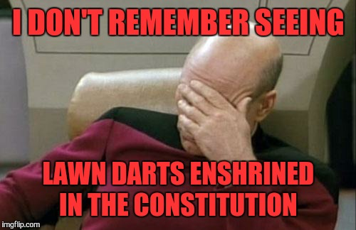 Captain Picard Facepalm Meme | I DON'T REMEMBER SEEING LAWN DARTS ENSHRINED IN THE CONSTITUTION | image tagged in memes,captain picard facepalm | made w/ Imgflip meme maker