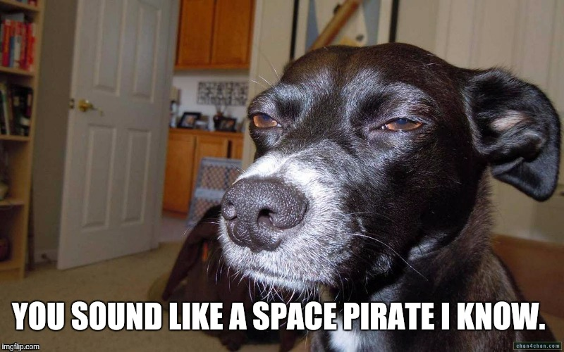 YOU SOUND LIKE A SPACE PIRATE I KNOW. | made w/ Imgflip meme maker
