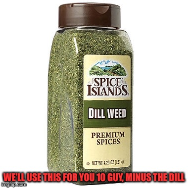WE'LL USE THIS FOR YOU 10 GUY, MINUS THE DILL | made w/ Imgflip meme maker