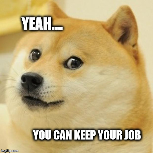 Job Security | YEAH.... YOU CAN KEEP YOUR JOB | image tagged in memes,doge,job,work | made w/ Imgflip meme maker