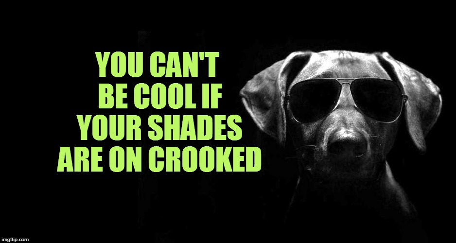 YOU CAN'T BE COOL IF YOUR SHADES ARE ON CROOKED | made w/ Imgflip meme maker