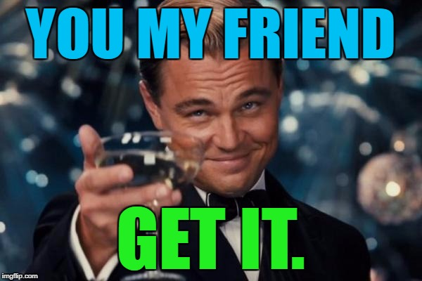 Leonardo Dicaprio Cheers Meme | YOU MY FRIEND GET IT. | image tagged in memes,leonardo dicaprio cheers | made w/ Imgflip meme maker