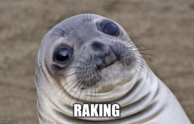 Awkward Moment Sealion Meme | RAKING | image tagged in memes,awkward moment sealion | made w/ Imgflip meme maker