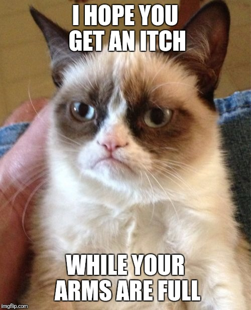 Grumpy Cat Meme | I HOPE YOU GET AN ITCH WHILE YOUR ARMS ARE FULL | image tagged in memes,grumpy cat | made w/ Imgflip meme maker