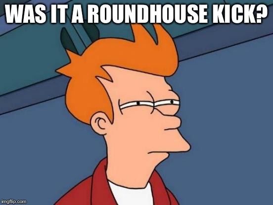 Futurama Fry Meme | WAS IT A ROUNDHOUSE KICK? | image tagged in memes,futurama fry | made w/ Imgflip meme maker