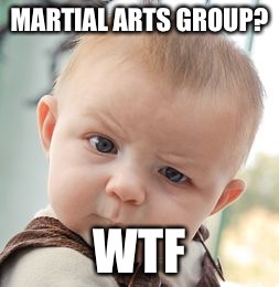 Skeptical Baby Meme | MARTIAL ARTS GROUP? WTF | image tagged in memes,skeptical baby | made w/ Imgflip meme maker