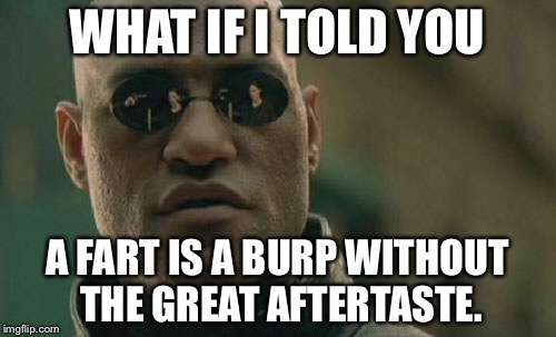 A fart is a burp without the great aftertaste | WHAT IF I TOLD YOU A FART IS A BURP WITHOUT THE GREAT AFTERTASTE. | image tagged in memes,matrix morpheus,fart,burp,toilet humor,flatulence | made w/ Imgflip meme maker