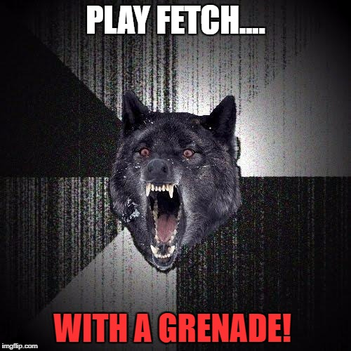 Insanity Wolf Meme | PLAY FETCH.... WITH A GRENADE! | image tagged in memes,insanity wolf | made w/ Imgflip meme maker