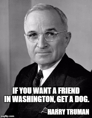 IF YOU WANT A FRIEND IN WASHINGTON, GET A DOG. HARRY TRUMAN | image tagged in harry truman | made w/ Imgflip meme maker