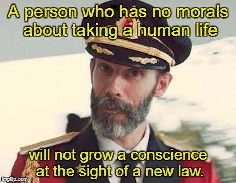 Captain Obvious  | A person who has no morals about taking a human life will not grow a conscience at the sight of a new law. | image tagged in captain obvious,gun control,liberal logic,memes | made w/ Imgflip meme maker
