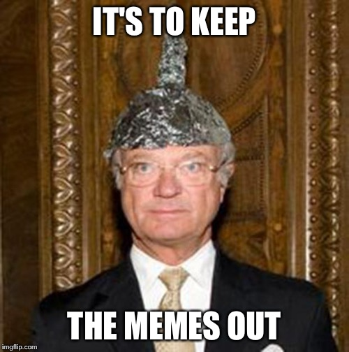 Do you like my hat? | IT'S TO KEEP THE MEMES OUT | image tagged in tinfoil hat guy | made w/ Imgflip meme maker