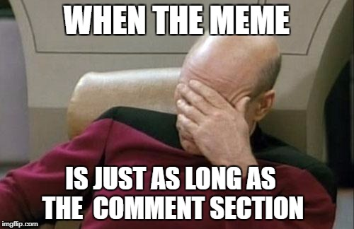 WHEN THE MEME IS JUST AS LONG AS THE  COMMENT SECTION | image tagged in memes,captain picard facepalm | made w/ Imgflip meme maker