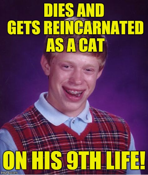 Bad Luck Brian Meme | DIES AND GETS REINCARNATED AS A CAT ON HIS 9TH LIFE! | image tagged in memes,bad luck brian | made w/ Imgflip meme maker