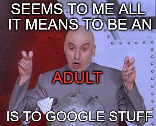 Dr Evil Laser Meme | SEEMS TO ME ALL IT MEANS TO BE AN IS TO GOOGLE STUFF ADULT | image tagged in memes,dr evil laser | made w/ Imgflip meme maker