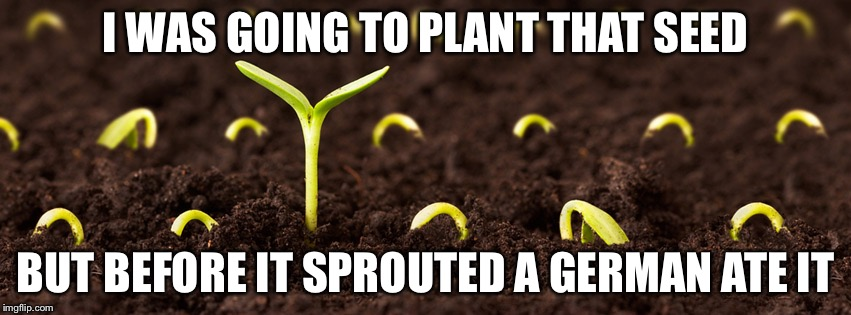 Germinated | I WAS GOING TO PLANT THAT SEED BUT BEFORE IT SPROUTED A GERMAN ATE IT | image tagged in seeds,memes | made w/ Imgflip meme maker