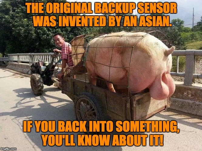Backup squeal. | THE ORIGINAL BACKUP SENSOR WAS INVENTED BY AN ASIAN. IF YOU BACK INTO SOMETHING, YOU'LL KNOW ABOUT IT! | image tagged in asian,backup | made w/ Imgflip meme maker