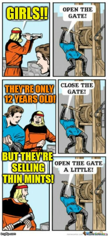 Open the gate a little | GIRLS!! BUT THEY'RE SELLING THIN MINTS! THEY'RE ONLY 12 YEARS OLD! | image tagged in open the gate a little | made w/ Imgflip meme maker