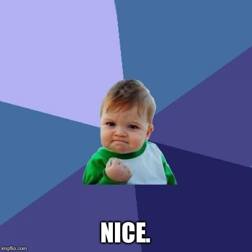 Success Kid Meme | NICE. | image tagged in memes,success kid | made w/ Imgflip meme maker