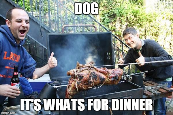Actually it's goat...at the most awesome tailgate party ever. | DOG IT'S WHATS FOR DINNER | image tagged in goat | made w/ Imgflip meme maker