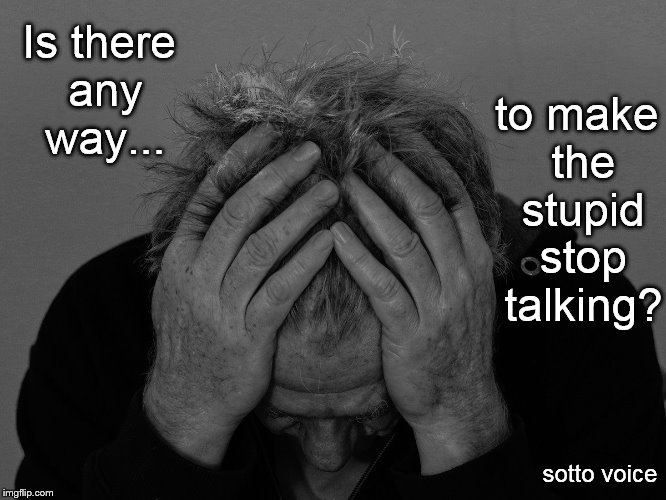 Is there any way... sotto voice to make the stupid stop talking? | image tagged in ugh | made w/ Imgflip meme maker