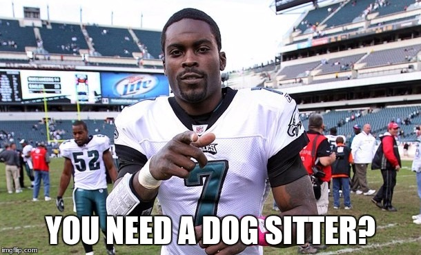 Mike Vick | YOU NEED A DOG SITTER? | image tagged in mike vick | made w/ Imgflip meme maker