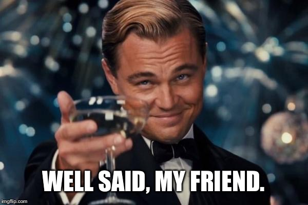 Leonardo Dicaprio Cheers Meme | WELL SAID, MY FRIEND. | image tagged in memes,leonardo dicaprio cheers | made w/ Imgflip meme maker