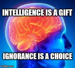 INTELLIGENCE IS A GIFT IGNORANCE IS A CHOICE | image tagged in human brain | made w/ Imgflip meme maker