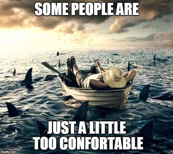 Man Shark Boat Relaxed | SOME PEOPLE ARE JUST A LITTLE TOO CONFORTABLE | image tagged in man shark boat relaxed | made w/ Imgflip meme maker