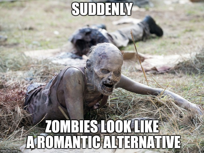 The Walking Dead Crawling Zombie | SUDDENLY ZOMBIES LOOK LIKE A ROMANTIC ALTERNATIVE | image tagged in the walking dead crawling zombie | made w/ Imgflip meme maker