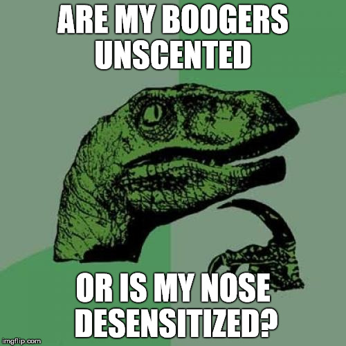 Fragrance Free | ARE MY BOOGERS UNSCENTED OR IS MY NOSE DESENSITIZED? | image tagged in memes,philosoraptor,booger,stink | made w/ Imgflip meme maker