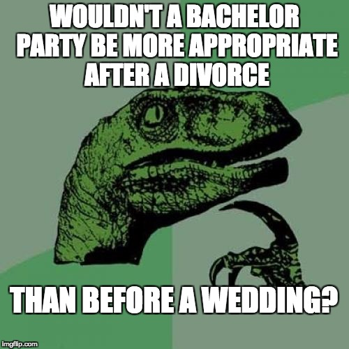 Philosoraptor Meme | WOULDN'T A BACHELOR PARTY BE MORE APPROPRIATE AFTER A DIVORCE THAN BEFORE A WEDDING? | image tagged in memes,philosoraptor | made w/ Imgflip meme maker
