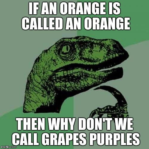 Philosoraptor Meme | IF AN ORANGE IS CALLED AN ORANGE THEN WHY DON'T WE CALL GRAPES PURPLES | image tagged in memes,philosoraptor | made w/ Imgflip meme maker