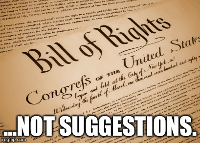 Unalienable and endowed by Our Creator... | ...NOT SUGGESTIONS. | image tagged in bill of rights,constitution,human rights,gun rights,rights,united states of america | made w/ Imgflip meme maker