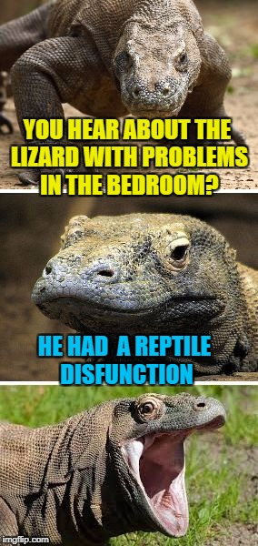 Bad pun Viagra dragon | YOU HEAR ABOUT THE LIZARD WITH PROBLEMS IN THE BEDROOM? HE HAD  A REPTILE DISFUNCTION | image tagged in bad pun komodo dragon,erectile dysfunction,reptile,viagra,penis jokes,lizard | made w/ Imgflip meme maker