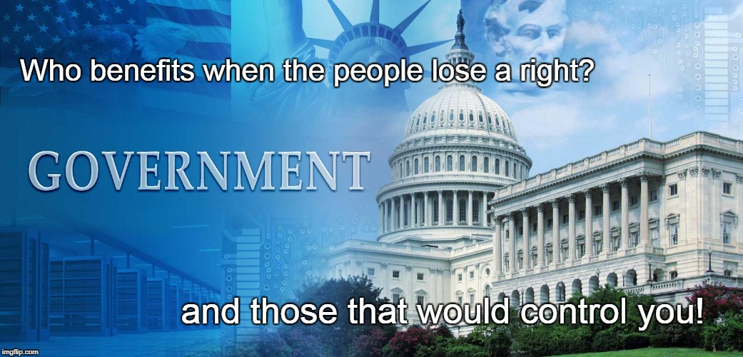 Government Control | Who benefits when the people lose a right? and those that would control you! | image tagged in government meme,civil rights,human rights,loss of rights,tyranny | made w/ Imgflip meme maker