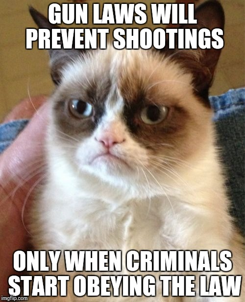 GUN LAWS ARE IDIOTIC | GUN LAWS WILL PREVENT SHOOTINGS ONLY WHEN CRIMINALS START OBEYING THE LAW | image tagged in memes,grumpy cat,funny | made w/ Imgflip meme maker