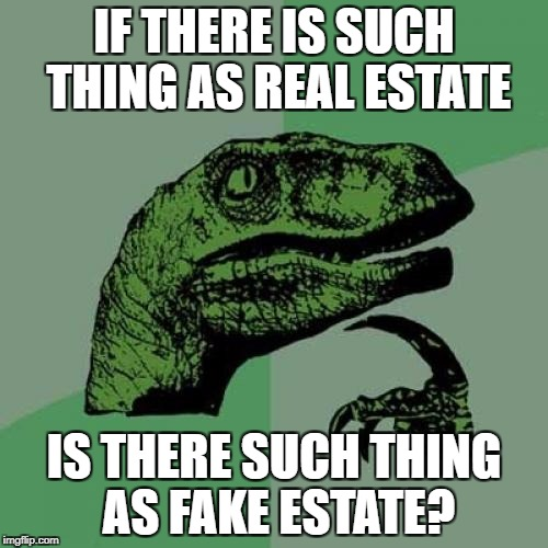 Philosoraptor Meme | IF THERE IS SUCH THING AS REAL ESTATE IS THERE SUCH THING AS FAKE ESTATE? | image tagged in memes,philosoraptor | made w/ Imgflip meme maker