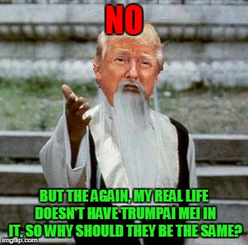 Trumpai Mei | NO BUT THE AGAIN, MY REAL LIFE DOESN'T HAVE TRUMPAI MEI IN IT, SO WHY SHOULD THEY BE THE SAME? | image tagged in trumpai mei | made w/ Imgflip meme maker
