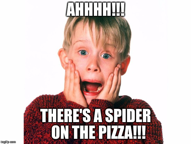 AHHHH!!! THERE'S A SPIDER  ON THE PIZZA!!! | image tagged in memes,too funny,funny memes,hilarious,home alone kid | made w/ Imgflip meme maker