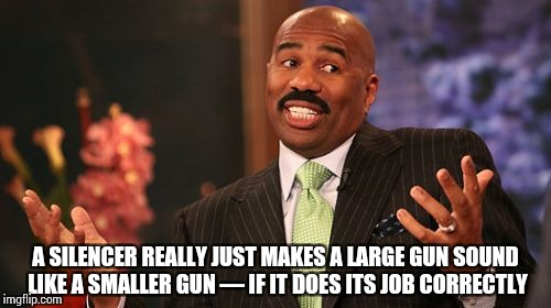 Steve Harvey Meme | A SILENCER REALLY JUST MAKES A LARGE GUN SOUND LIKE A SMALLER GUN — IF IT DOES ITS JOB CORRECTLY | image tagged in memes,steve harvey | made w/ Imgflip meme maker