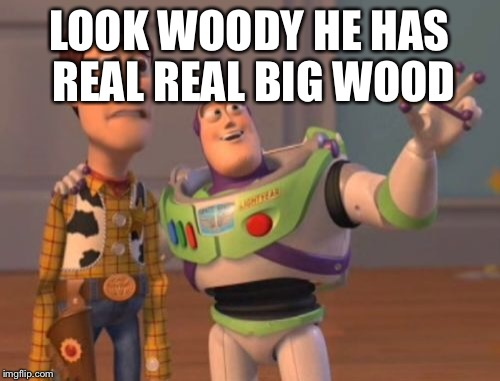 X, X Everywhere Meme | LOOK WOODY HE HAS REAL REAL BIG WOOD | image tagged in memes,x,x everywhere,x x everywhere | made w/ Imgflip meme maker