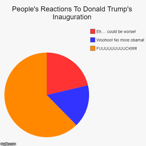 People's Reactions To Donald Trump's Inauguration | FUUUUUUUUUCK!!!!!, Woohoo! No more obama!, Eh.... could be worse! | image tagged in funny,pie charts | made w/ Imgflip pie chart maker