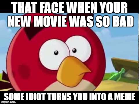 What The Duck | THAT FACE WHEN YOUR NEW MOVIE WAS SO BAD SOME IDIOT TURNS YOU INTO A MEME | image tagged in dank birb,memes | made w/ Imgflip meme maker
