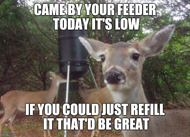 Oh deer | CAME BY YOUR FEEDER TODAY IT'S LOW IF YOU COULD JUST REFILL IT THAT'D BE GREAT | image tagged in that would be great,deer,hunting,memes,meme | made w/ Imgflip meme maker