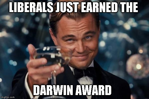 Leonardo Dicaprio Cheers Meme | LIBERALS JUST EARNED THE DARWIN AWARD | image tagged in memes,leonardo dicaprio cheers | made w/ Imgflip meme maker