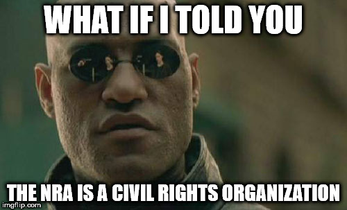 Matrix Morpheus Meme | WHAT IF I TOLD YOU THE NRA IS A CIVIL RIGHTS ORGANIZATION | image tagged in memes,matrix morpheus | made w/ Imgflip meme maker